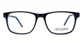 GENTLEMAN A2008 C5