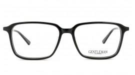 GENTLEMAN 1020019 C1