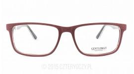 GENTLEMAN GT 1609HP COL.3